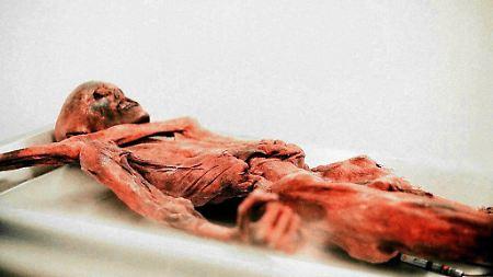 A múmia de gelo foi descoberta há 20 anos.